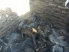 more-pictures-of-burnt-boy-in-headlands